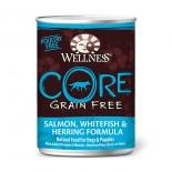 Wellness CORE 海洋魚﹙無穀物﹚ 12.5oz
