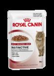 Royal Canin-(啫喱系列)成貓滋味配方-85g